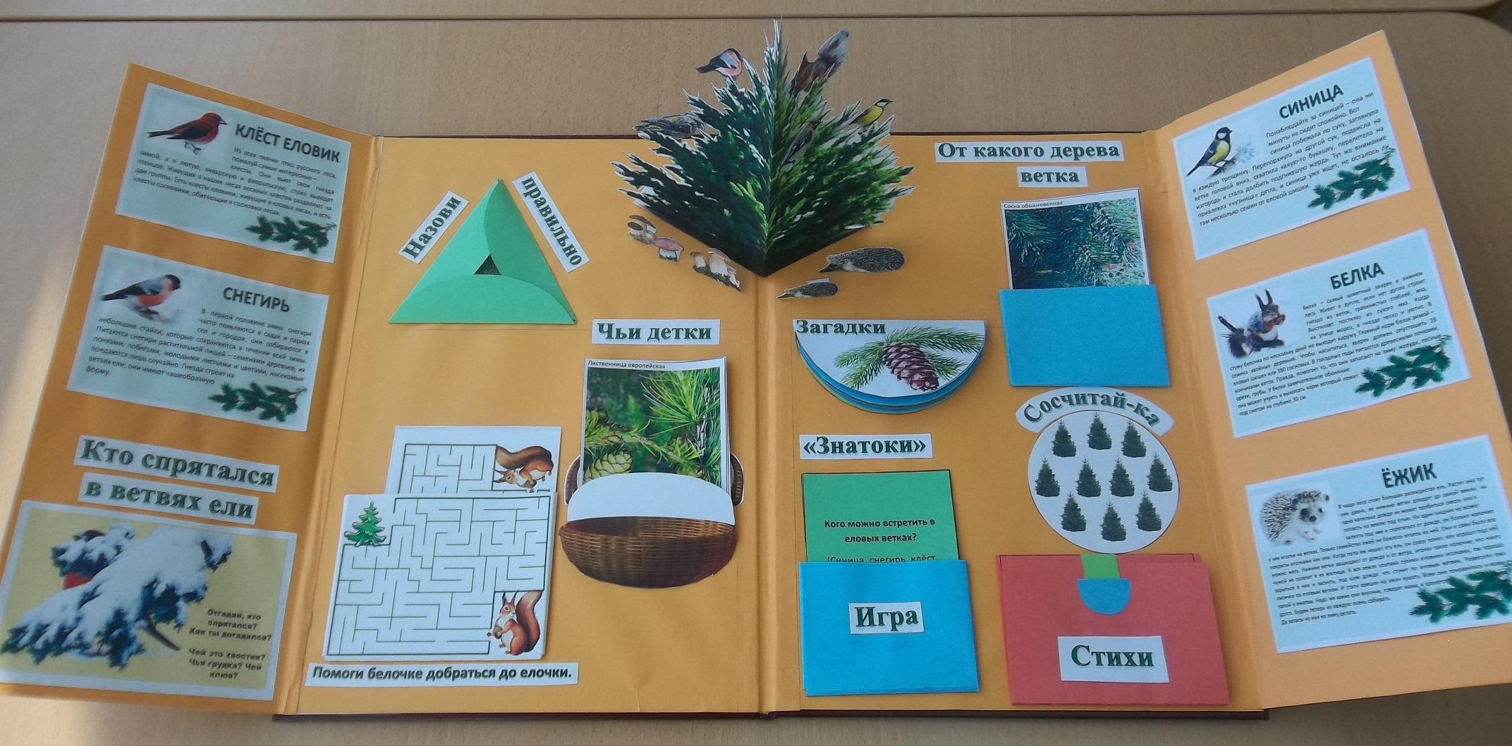 Лэпбук про экологию!: Это интересно 78